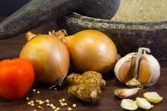 Still life Onion inggredient Stock Image