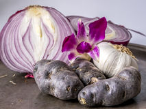 Still life of onions, flowers and potatoes Royalty Free Stock Photo