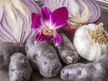 Still life of onions, flowers and potatoes Royalty Free Stock Photos