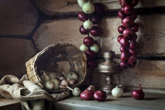Still life with onions and old lamp royalty free stock photography
