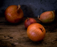 Still life with onions on an old table Stock Image
