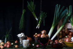 Still life with onions Stock Photo