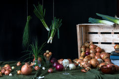 Still life with onions Stock Photography