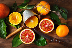 Still life with orange fruit and green leaves Royalty Free Stock Photos