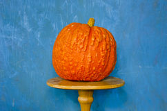 Still-life with orange pumpkin Stock Image