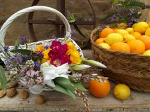 Still life with oranges and flowers. Still life with  oranges flowers and tea pot Royalty Free Stock Image