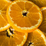 Still life with oranges Royalty Free Stock Image