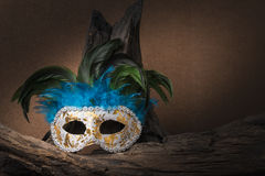 Still life painting photography with carnival mask and timber. On brown background; mystery concept Royalty Free Stock Photography