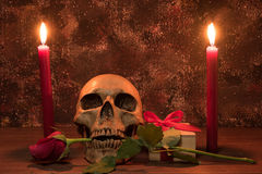 Still life painting photography with human skull, present, rose. And candle on wooden table Stock Photography