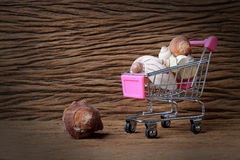 Still life painting photography with Mini shopping cart of a lot of shells with old beautiful wooden background. - copy space.  Stock Photography