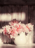 Still life with peonies Royalty Free Stock Photos