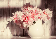 Still life with peonies Royalty Free Stock Image