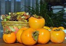 Still life, persimmon. Close-up Stock Images