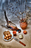 Still life with pheasant. Art still life with a pheasant and bread Stock Photos