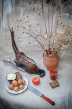 Still life with pheasant Stock Images