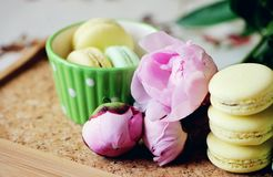 Still-life photo with cup, macaroons and peony Royalty Free Stock Photos
