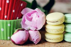 Still-life photo with cups, macaroons and peony Royalty Free Stock Images
