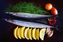 Something Fishy. A still life photo of fish and other food ingredients Stock Images