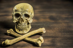 Still life photography with human skull and crossbones Stock Photography