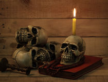 Still life photography with human skull on wood background. Still life photography concept with human skull on wood background stock photography