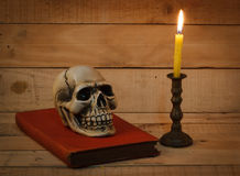 Still life photography with human skull on wood background. Still life photography concept with human skull on wood background royalty free stock image