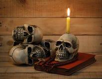 Still life photography with human skull on wood background. Still life photography concept with human skull on wood background royalty free stock photos