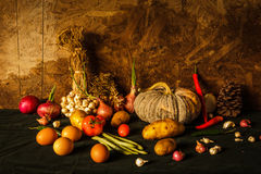Still life photography with pumpkin, spices, herbs Stock Photos