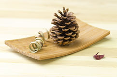 Still life - pine cone Stock Photos