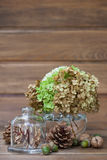 Still life of pine cones, walnuts, acorns and a vase with greens Stock Photos