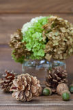 Still life of pine cones, walnuts, acorns and a vase with greens Royalty Free Stock Photo