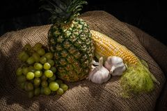 Still Life - Pineapple, Corn, Grapes and Garlic Bulbs. Still Life of pineapple, corn, grapes and two garlic bulbs all presented on a coarse burlap tissue royalty free stock images