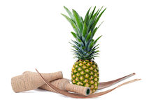 Still life of pineapple and decorated bottles Stock Photos