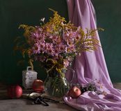 still life with pink colors and apples Stock Images
