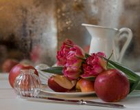 Still-life pink flower red apples bokeh background. White bokeh background red apples pink flower closeup stock photo