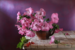 Still life with pink flowers on the table Stock Photography