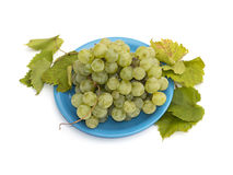 Still life a plate with grapes on the isolated background Royalty Free Stock Photos
