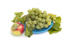Still life a plate with grapes and one apple at the left, isolat Royalty Free Stock Image