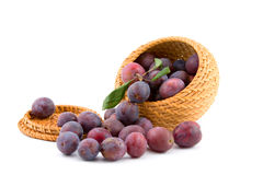 Still-life with plums Royalty Free Stock Images
