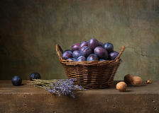 Still life with plums. In a basket on the table Stock Photography