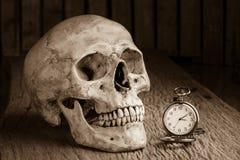Still life pocket watch. Still life with human skull with pocket watch Stock Image