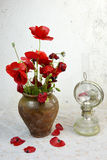 Still life with poppies Stock Photos