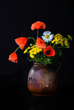 Still life with poppies Stock Image