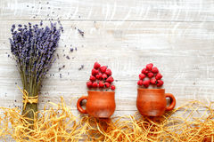 Still life pottery and lavender - country style with berries Royalty Free Stock Photography