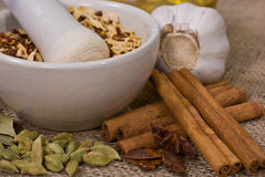Still life: Pounder and Spices. Still life: Pounder and Assortment of Spices Royalty Free Stock Image