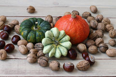 Still life with products of autumn - pumpkins, gourds, nuts, che Stock Photo