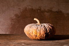 Still Life With pumpkin. Stock Photo