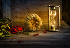 Still life with pumpkin, autumn Stock Images
