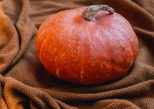 Still life with pumpkin on the background of cozy knitted textur Royalty Free Stock Image