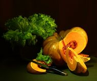 Still life; pumpkin, a bunch of parsley, on a dark background stock photography
