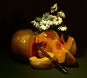 Still life; pumpkin, white flowers, on a dark background stock photos